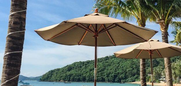 Tropisk paradis med palmer og liggestole