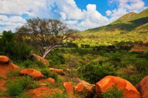 Savanne med røde sten og storslået landskab i baggrunden